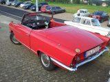 Freiamt 2012 (28/40)