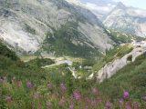 Schweiz 2009 (1/56)